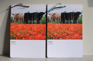 DMP Photography calendar